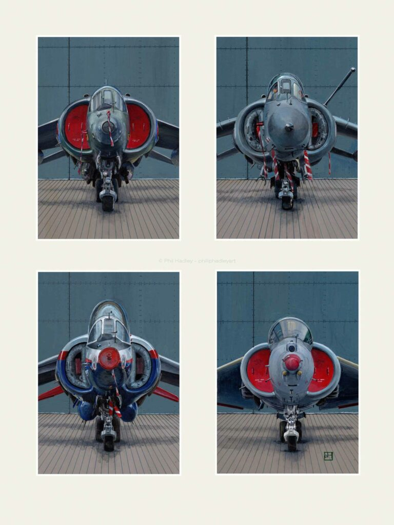 A SWARM OF HARRIERS